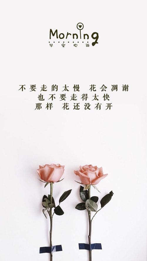 人生感悟的句子励志 激发自己潜在能力的格言警句