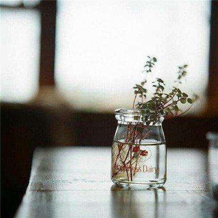 孤寂伤感唯美古风句子 看哭了的诗意说说