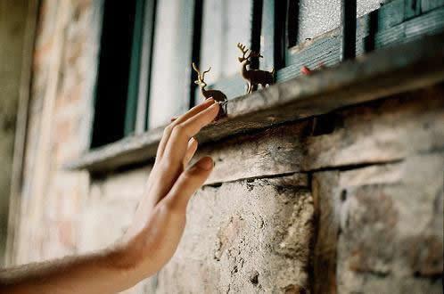 习惯一个人的伤感句子 经典失恋心凉说说短句