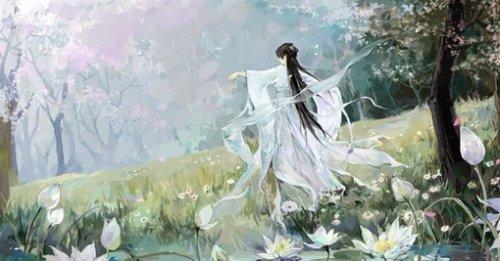 许你一世繁华,来生与君袖手天下